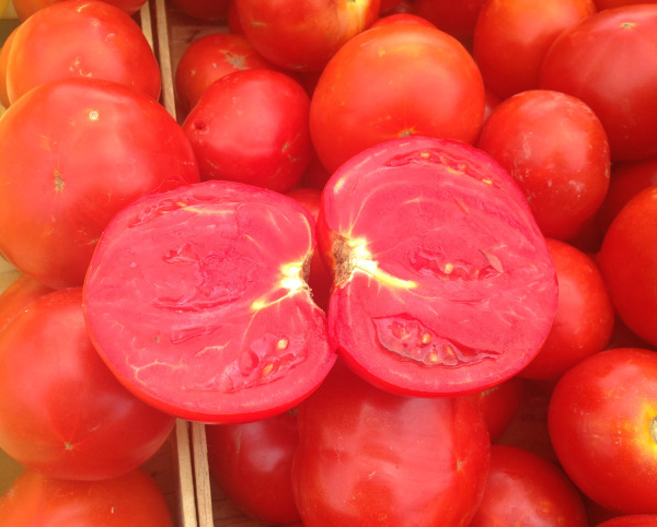 Have you EVER seen tomatoes this good before. They tasted AMAZING!