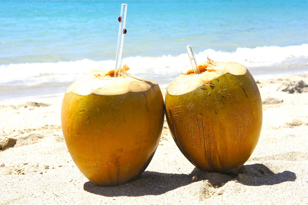 Glass Straws in fresh coconuts; perfection!