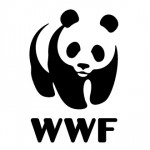 wwf-panda-bear-animal
